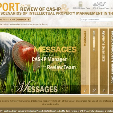 CASIP Report Review
